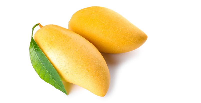 Altaufo-Mangoes-News
