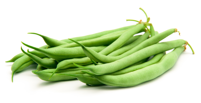 Green-Bean-Image