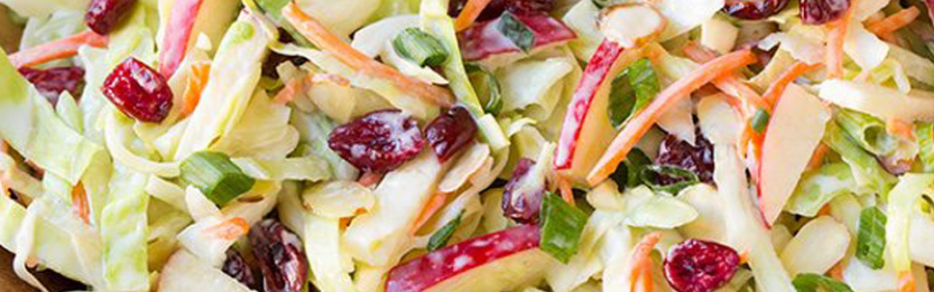 Apple-Cranberry-and-Almond-Coleslaw Banner